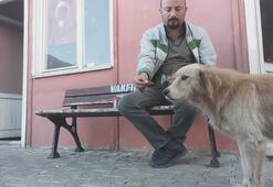 Köpeğe bisküvi uzatıp, Beni seviyorsan yersin dedi