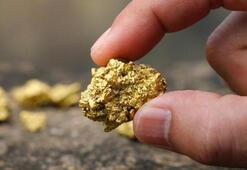 Kuyular açıldı TMSFden altın müjdesi
