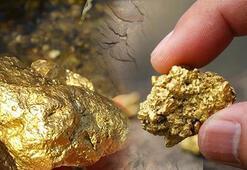 TMSF Başkanı açıkladı Altın müjdesi geliyor...