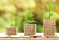 İhtiyaç kredisi nasıl alınır En uygun faiz oranları ve hesaplama yöntemleri