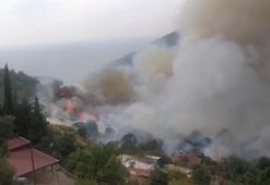 Son dakika haberi: 3 ilde yangın Evler tahliye ediliyor