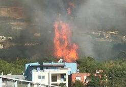 Son dakika Hatayda yangın Bakan Pakdemirliden açıklama