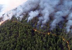 Anamurdaki orman yangınında 150 hektar alan zarar gördü