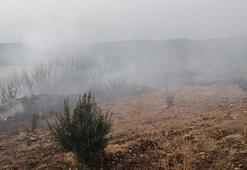 Son dakika... Hataydaki orman yangını kontrol altına alındı