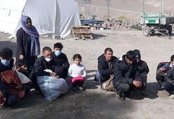 Vanda 12 düzensiz göçmen yakalandı