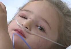 Son dakika... Türkiyeye umut verdi İşte minik Elifin hastaneden ilk görüntüsü