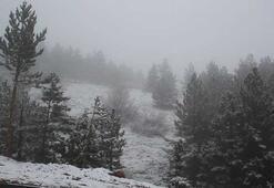 Konyaya mevsimin ilk karı yağdı