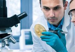 Moleküler Biyoloji Ve Genetik Bölümü Nedir, Dersleri Nelerdir Mezunu Ne İş Yapar