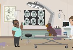 Laborant Ve Veteriner Sağlık (Myo) Bölümü Nedir, Dersleri Nelerdir Mezunu Ne İş Yapar