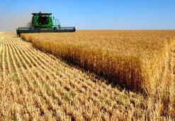 Tarımsal destekler belirlendi İşte detaylar...