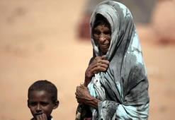 Nijeryada 9,8 milyon kişi açlık tehlikesi altında