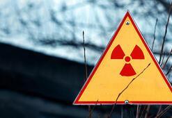 Radyasyon ve bazı kimyasallara maruz kalmak lösemi yapabilir