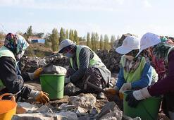 Türkiyenin en büyük kazısında 6 ayda 2 bin parça eser ortaya çıkarıldı