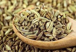 Rezene Çayı Faydaları Nelerdir Rezene Tohumu Ve Rezene Yağı Neye İyi Gelir