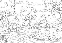 Ormanı boyama sayfası