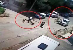 Bisiklet sürerken köpekler saldırdı, kaçmak isterken otomobille çarpıştı