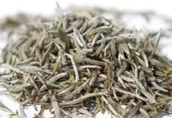 Beyaz Çayın Faydaları Nelerdir Beyaz Çay İçmek Mideye Ve Gribe İyi Gelir Mi