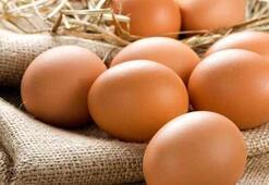 Yumurtanın Faydaları Nelerdir Yumurta Sarısı Ve Yumurta Kabuğu Neye İyi Gelir