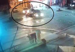 Motosikletli sürücü çarptığı otomobilin üstüne düştü