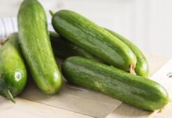 Salatalığın Faydaları Nelerdir Salatalık Suyu Turşusu Ve Kabuğu Neye İyi Gelir