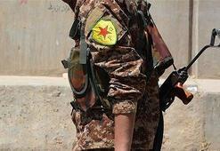 Terör örgütü DEAŞlıları serbest bırakmaya devam ediyor