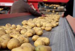 Patates üreticileri ihracat teşviki bekliyor