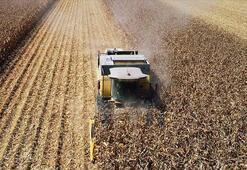 Tarım ÜFE ekim ayında arttı