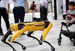 Robot köpek Spot yeni numaralar öğrendi
