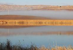 Kesin korunacak hassas alan ilan edilen Hafik Gölünde sonbahar güzelliği