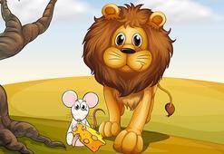 Aslan ile Fare Masalı Oku: Fare ile Aslanın heyecanlandıran hikayesi