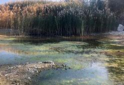 Eğirdir ve Beyşehirde dip suyu alarmı
