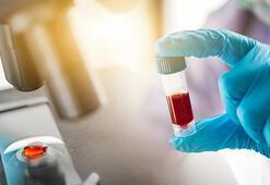 İnsan kanı hakkında kimsenin bilmediği 20 şaşırtan gerçek