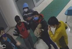 Çocuklar, yaralı halde buldukları köpeği kucaklayıp soluğu belediyede aldılar