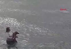 Denize girip köpeği ölmekten kurtardı