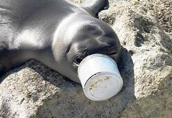 Plastik okyanusu