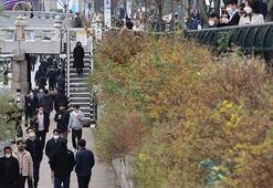 Güney Korede vakalarda korkutan artış