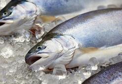 Buzluğa atılan balığın tadı bakın neden değişiyor