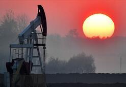 Putinden petrol tahmini