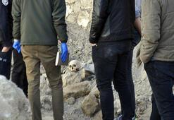Yıkılan metruk evde insan kafatası ve kemikleri bulundu