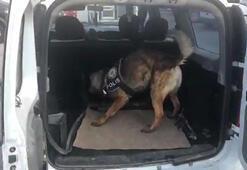 Vanda otomobilde 33 kilo uyuşturucu ele geçirildi