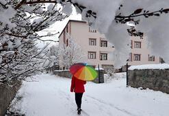 Son dakika... Meteorolojiden flaş kar uyarısı
