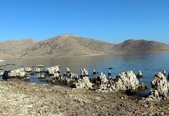 Van Gölü çekilince ortaya çıktı Dünyanın en büyüğü...
