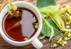 Anason Çayı Nasıl Yapılır Anason Bitki Çayı Nasıl Demlenir Ve Nasıl İçilir