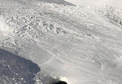 Korkunç Volkanda açılan deliğe düştü