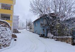Son dakika... 7 kentte kar yağışı Meteorolojiden uyarı yapıldı
