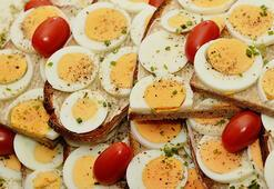 Yumurta Sarısı Ve Beyazının Faydaları Nelerdir Hangi Hastalıklardan Korur