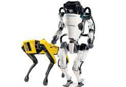 Robot köpek ve insansı Atlas Koreli mi oluyor