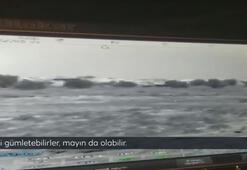 Bombalı tuzak kamerada PKK mayın döşedi FETÖ izledi