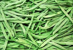 Taze Fasulyenin Faydaları Nelerdir Yeşil Fasulye Nelere İyi Gelir