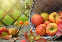 Kırmızı Ve Yeşil Elmanın Faydaları Nelerdir Elma Yemek Zayıflatır Mı